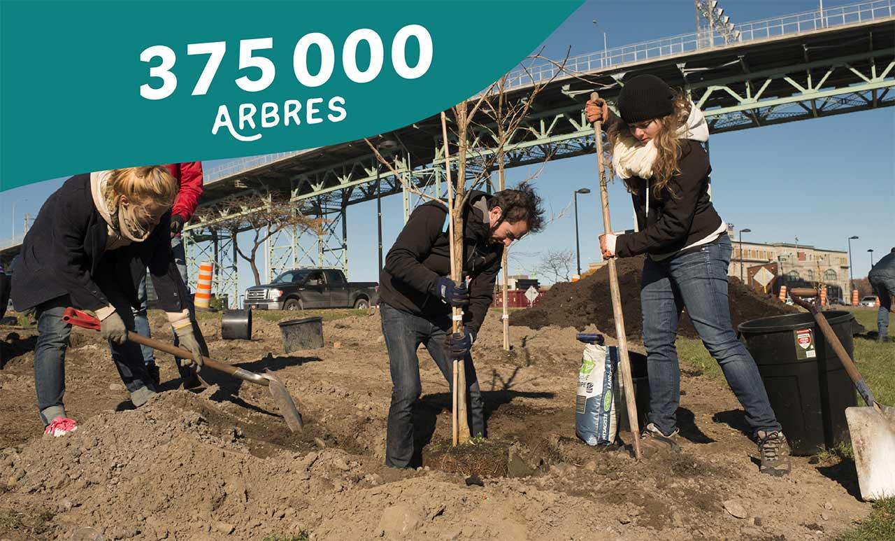 375 000 arbres
