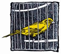 Le canari est devenu le symbole du 28 avril. Autrefois, il était utilisé dans les puits de mine pour détecter les gaz toxiques ou l'appauvrissement de l'apport en oxygène.