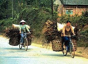 Un vélo a une deuxième vie de plus de 20 ans dans les pays du Sud. Il sert de moyen de transport et de gagne-pain à des milliers de familles. –  <br>Pierre Bouchard et Janick Lemieux / Pentax Canada